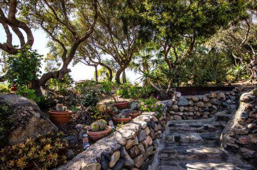 giardino scala pietra